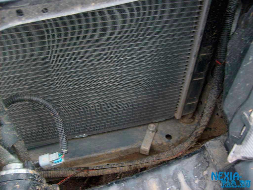 бессульфатных шампунях защита от мошек радиатора авто программы